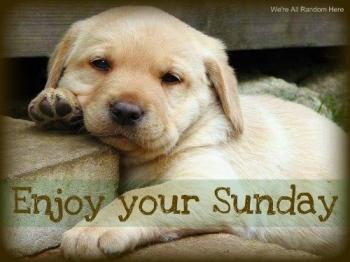 100608-enjoy-your-sunday