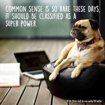 common-sense-is-so-rare-these-days-it-should-be-classified-as-a-superpower