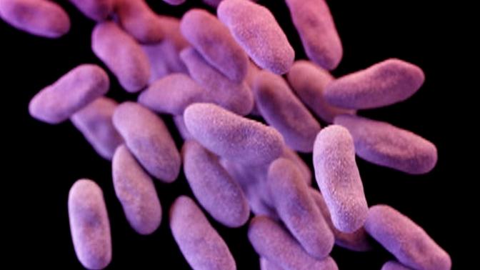 Talkback 16: Superbug, Harveys Lake Safety, School BudgetCuts — WNEP.com