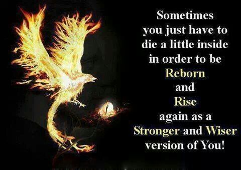 Reborn and Rise